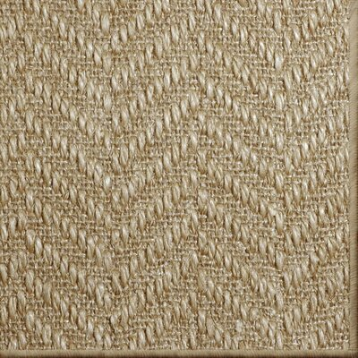 Paige Natural Area Rug Rug Size: 8 x 10