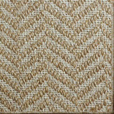 Paige Spice Area Rug Rug Size: 6 x 9