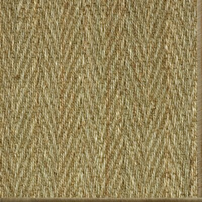 Dorothea Natural Area Rug Rug Size: 8 x 10