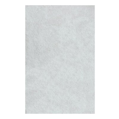 Catharine Hand-Woven White Area Rug Rug Size: Rectangle 5 x 8