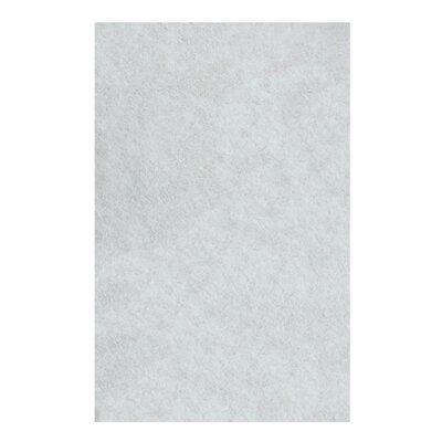 Catharine Hand-Woven White Area Rug Rug Size: Rectangle 4 x 6