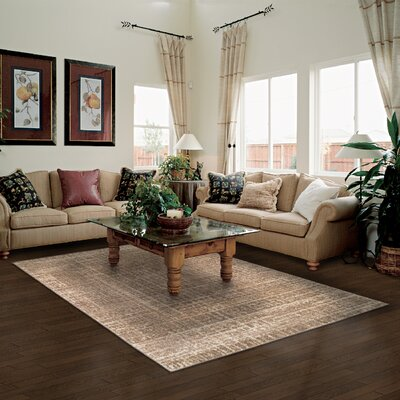 Wheaton Brown Area Rug Rug Size: 5 x 8