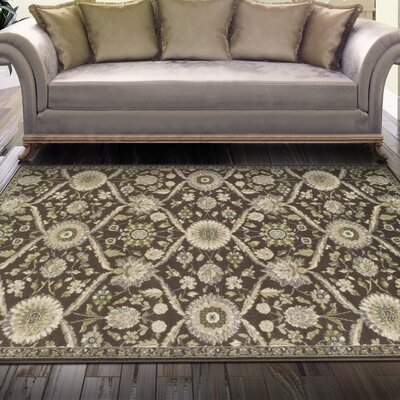 Angelita Brown Area Rug Rug Size: 5 x 8