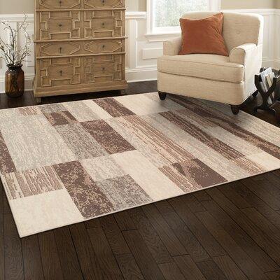 Rockwood Slate Area Rug Rug Size: 4 x 6
