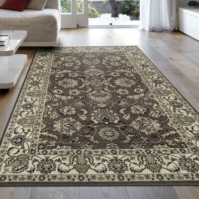 Castine Brown Area Rug Rug Size: 4 x 6