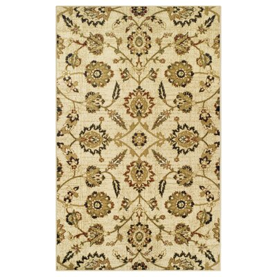 Burbank Cream Area Rug Rug Size: 5 x 8