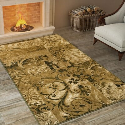 Burbank Scroll Gold Area Rug Rug Size: 5 x 8