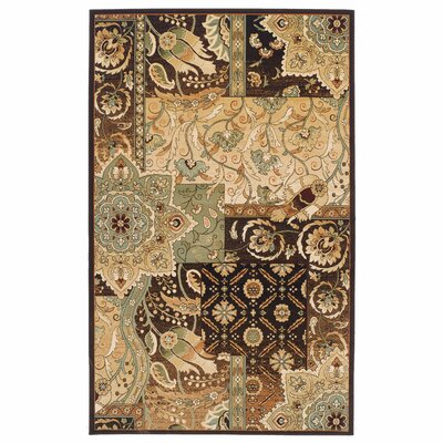 Callicoon Bohemian Brown Area Rug Rug Size: 4 x 6