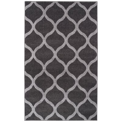 Modern Trellis Gray Area Rug Rug Size: 4 x 6
