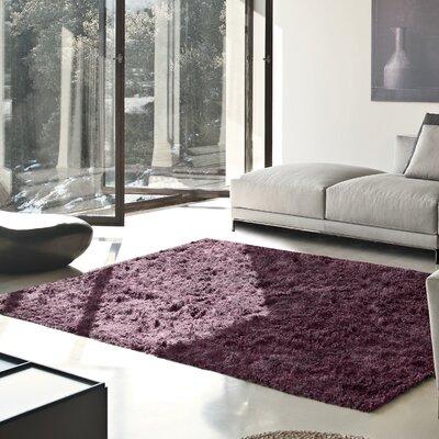 Blaisdell Shag Hand Woven Purple Area Rug Rug Size: 4' x 6'