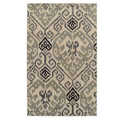 Callicoon Damask Beige Area Rug Rug Size: 4 x 6