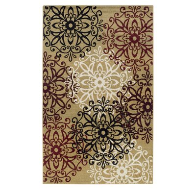 Callicoon Leigh Gold Area Rug Rug Size: 4 x 6