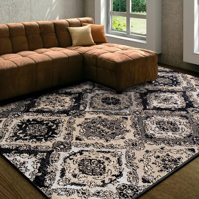 Diskin Black Area Rug Rug Size: Rectangle 5x8