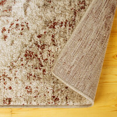 Golston Ombre Cream Area Rug Rug Size: Rectangle 8x10