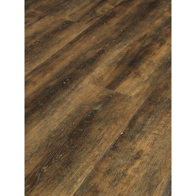 MasterCore Premium 7 x 49 x 6.5mm WCP Luxury Vinyl Plank in Jamestown