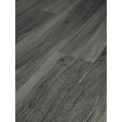 MasterCore Premium 7 x 49 x 6.5mm WPC Luxury Vinyl Plank in Outer Banks