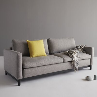 Donn Sleeper Sofa Upholstery: Dance Gray