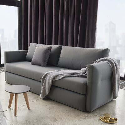 Rayne Sleeper Sofa Upholstery: Coastal Seal Gray