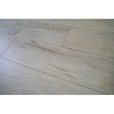 Coast 47.85 x 4.96 x 12mm Laminate in Washed Pine