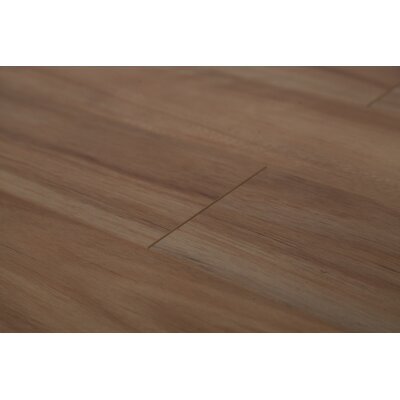 Lucency 47.85 x 4.96 x 12mm Laminate Flooring in Golden Eucalyptus