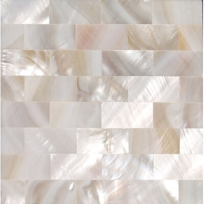 12 x 12 Authentic SeaShell Tile Seamless Brick Mosaic Panel in Veined White Mother of Pearl