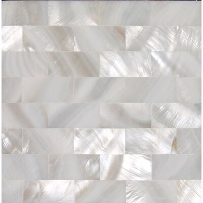 12 x 12 Authentic SeaShell Tile Seamless Brick Mosaic Panel in Un-Veined White Mother of Pearl