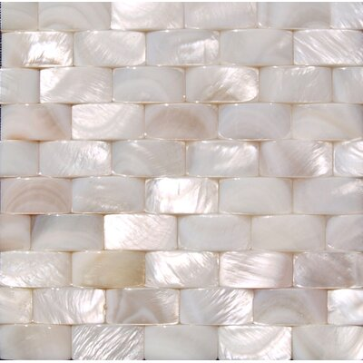 12 x 12 Authentic SeaShell Tile Seamless Three Dimensional Basketweave A1 in White Mother of Pearl