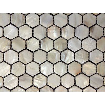Mesh Mounted 1 x 1 Authentic Polished Seashell Mosaic Tile in White