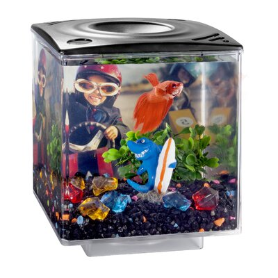 0.75 Gallon Betta Cube Aquarium Tank Color: Black