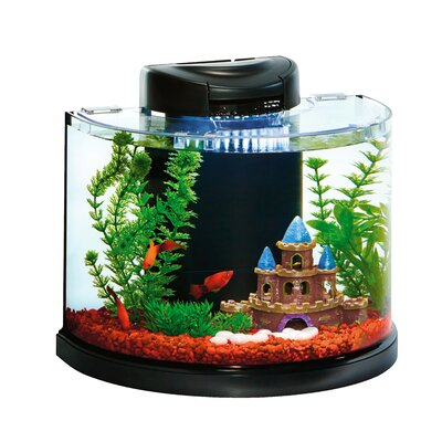 3 Gallon AquaDuo Semi Circle Glass Aquarium Kit