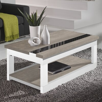 Tibbits Coffee Table with Lift Top Finish: Ash/Polar