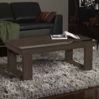 Danae Coffee Table with Lift Top Finish: Natur