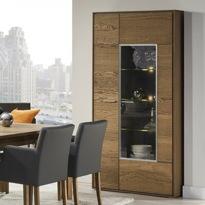 Thiago 2 Door Accent Wood Cabinet