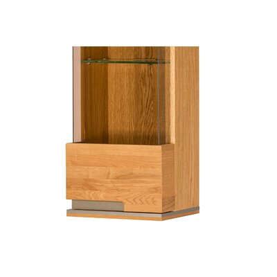 Dalzell 1 Door Display Accent Cabinet