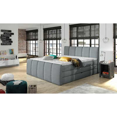 Schwab Upholstered Panel Bed with Mattress Size: Queen