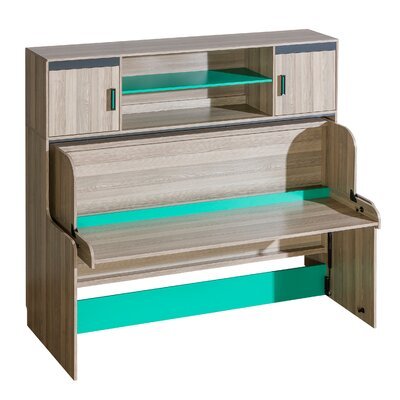 Hunziker Wall Bed Color: Green