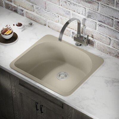 Granite Composite 25 x 22 Drop-in Kitchen Sink Finish: Slate