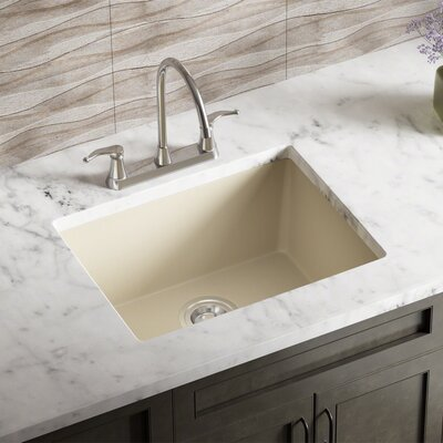22 x 17 Undermount Kitchen Sink Finish: Beige