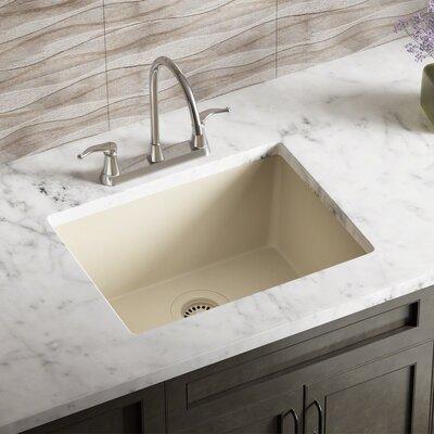 Granite Composite 22 x 17 Undermount Kitchen Sink with Flange Finish: Beige