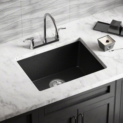 22 x 17 Undermount Kitchen Sink Finish: Black