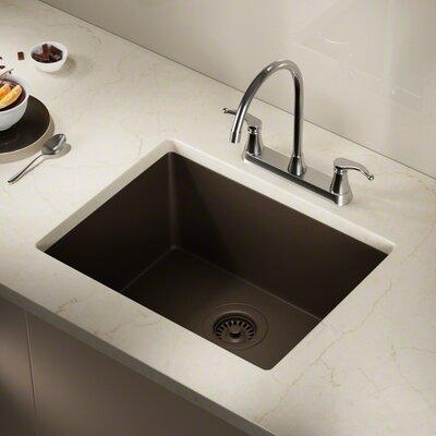 Granite Composite 22 x 17 Undermount Kitchen Sink with Flange Finish: Mocha