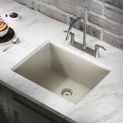 Granite Composite 22 x 17 Undermount Kitchen Sink with Flange Finish: Slate