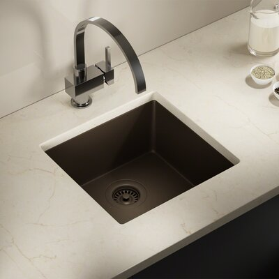 Granite Composite 18 X 17 Undermount Kitchen Sink with Strainer Finish: Mocha