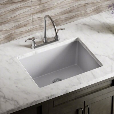 Granite Composite 22 x 17 Undermount Kitchen Sink with Flange Finish: Silver