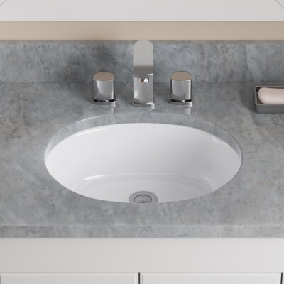 Vitreous China Oval Undermount Bathroom Sink with Overflow Sink Finish: White