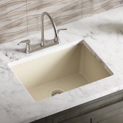 Granite Composite 22 x 17 Undermount Kitchen Sink with Strainer Finish: Beige