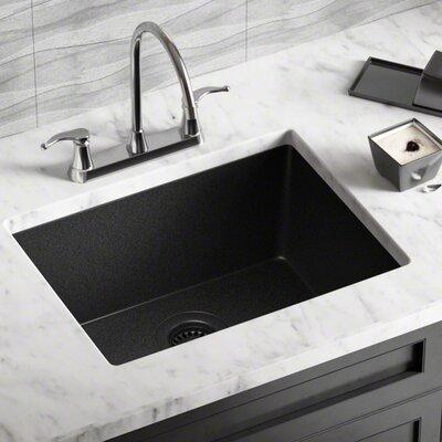 Granite Composite 22 x 17 Undermount Kitchen Sink with Strainer Finish: Black