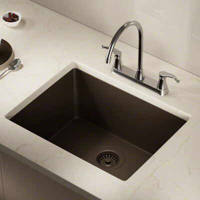 Granite Composite 22 x 17 Undermount Kitchen Sink with Strainer Finish: Mocha