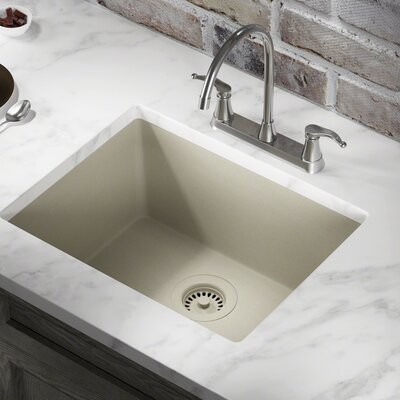 Granite Composite 22 x 17 Undermount Kitchen Sink with Strainer Finish: Slate