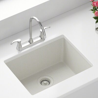 Granite Composite 22 x 17 Undermount Kitchen Sink with Strainer Finish: White
